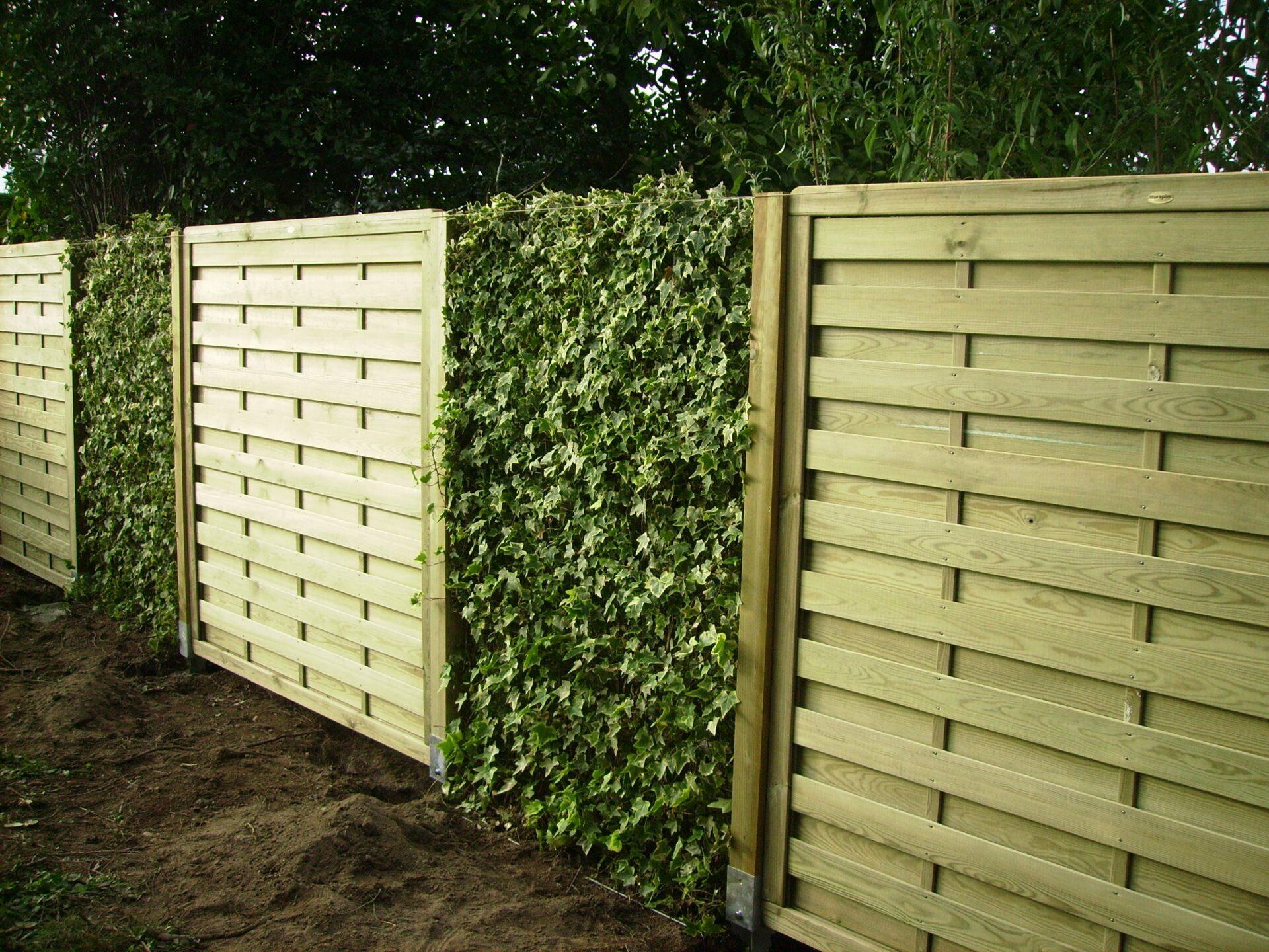 Création d'une clôture en clostas bois avec mur végétal par Aux 1001 Saison