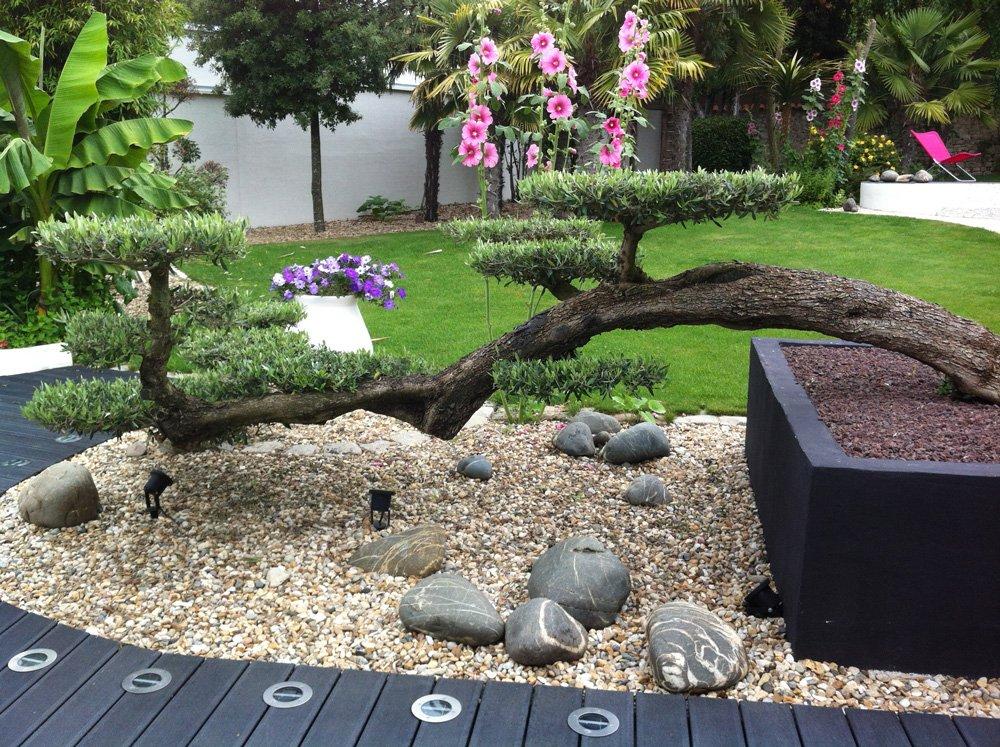 Création d'un jardin avec bonzaï géant en pot et décoration de pierres et graviers par Aux 1001 Saisons